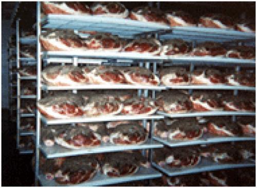 Применение полипропилена в технологии производства продукции мясной и рыбной переработки