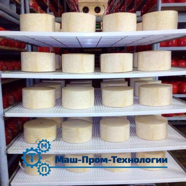 Полку полипропиленовую для сыра купить