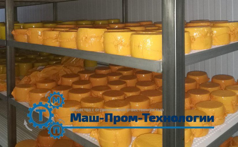 Вызревание сыра на производстве