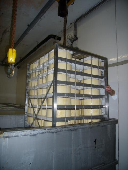 Полипропиленовые полки, в металлическом стеллаже с сыром на посолке