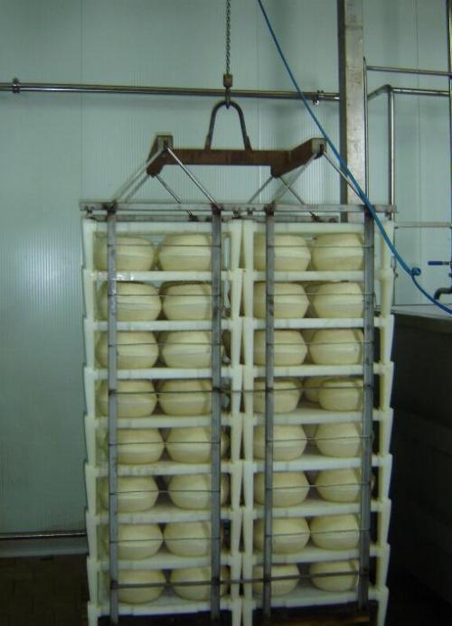 Полипропиленовый стеллаж с сыром после посолки, на просушку