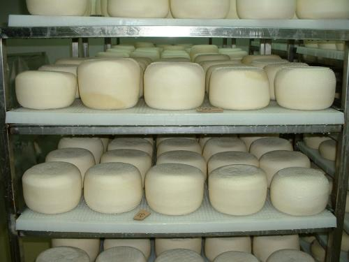Обсушка сыра