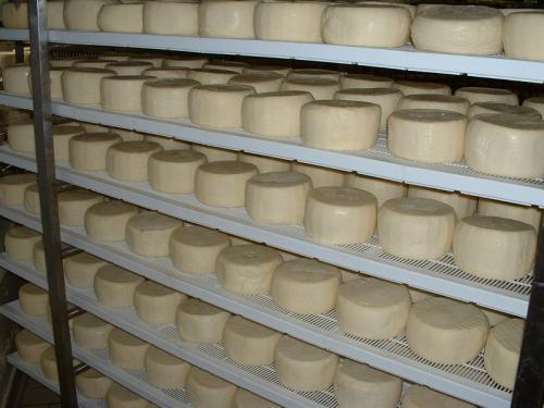 Сыр на полке при обсушке