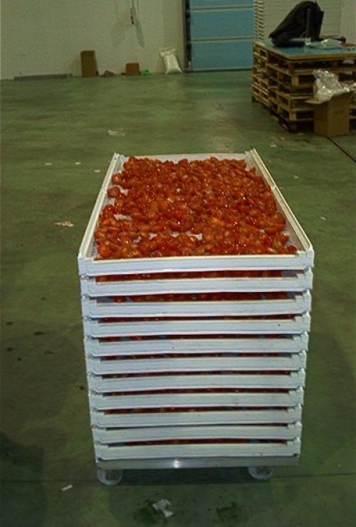 Лотки самоштабелируемые с овощами, для сушки